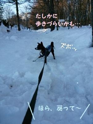 2014.2.21行かないよ3.jpg